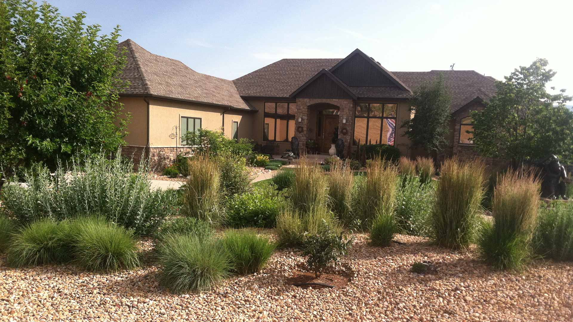 New plants installed in a Fort Collins, CO property's yard.