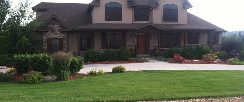New landscaping installation with native plants in front of a home in Fort Collins, CO.