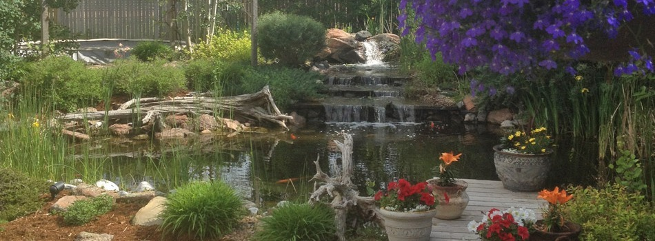 Custom rock waterfall in design inspired by nature in the backyard of a home in Windsor, CO.